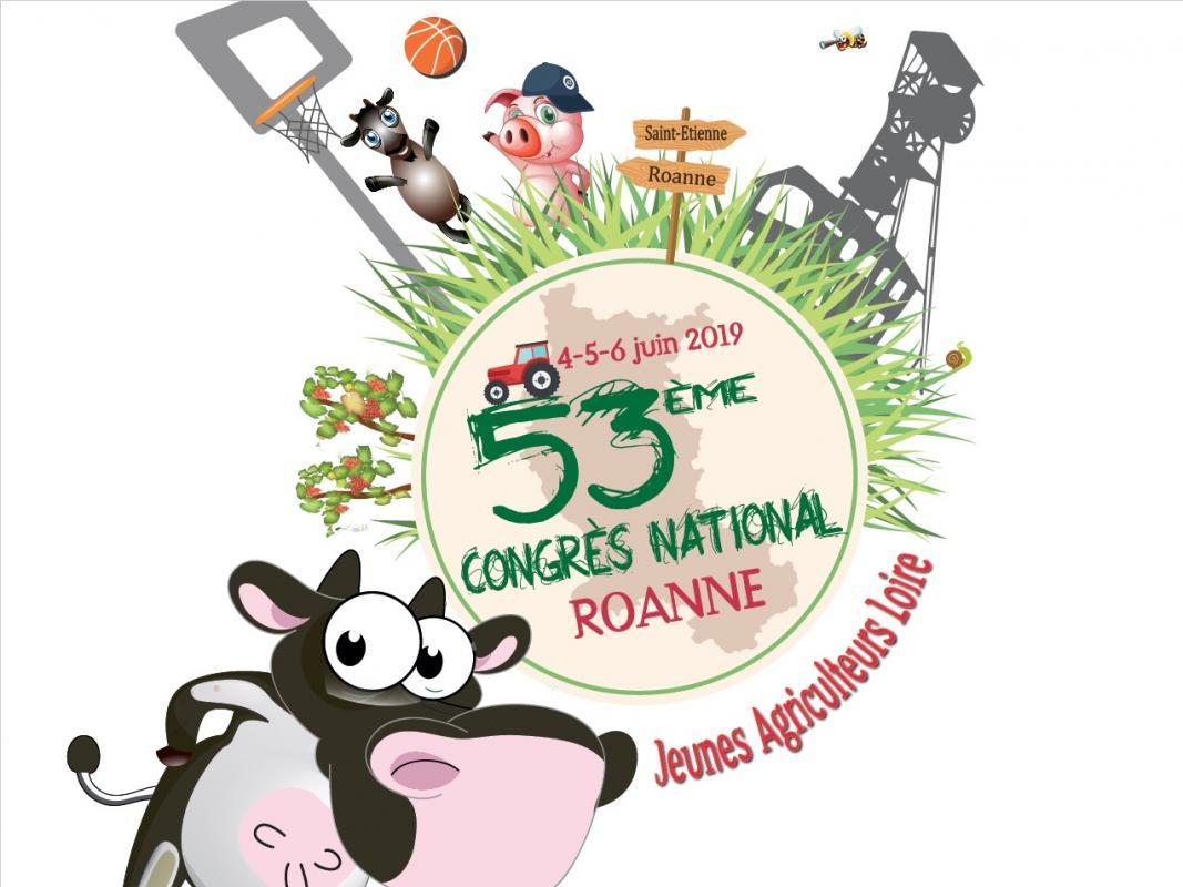 Congres jeunes agri ja 4x3jpeg paint